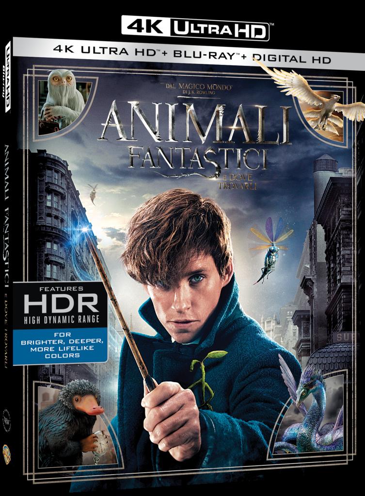 Animali fantastici e dove trovarli [UHD & Blu-ray]