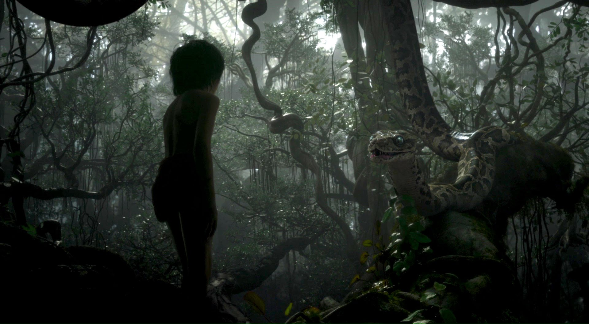 Libro della giungla [Blu-ray]